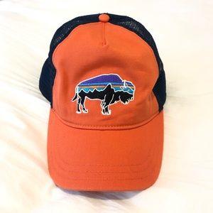 Patagonia Baseball Hat